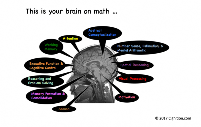 This is your brain on math